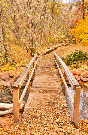 Title:  ~ Fall Bridge ~